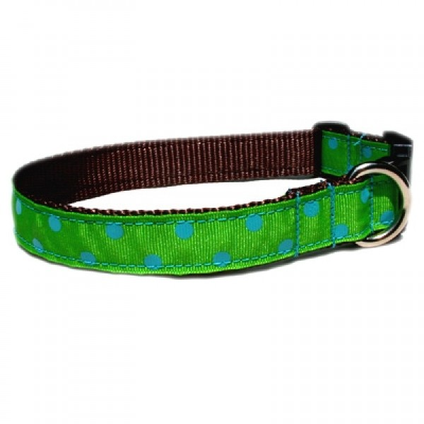 Lime/ Blue Dot Grosgrain Collection